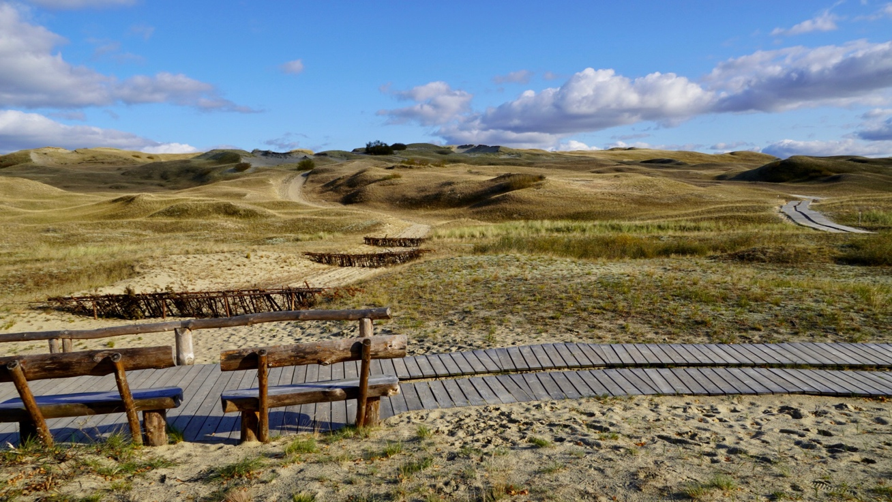 Charming solitude on the Curonian Spit