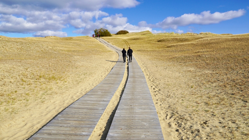 The endless dunes of the Curonian Spit