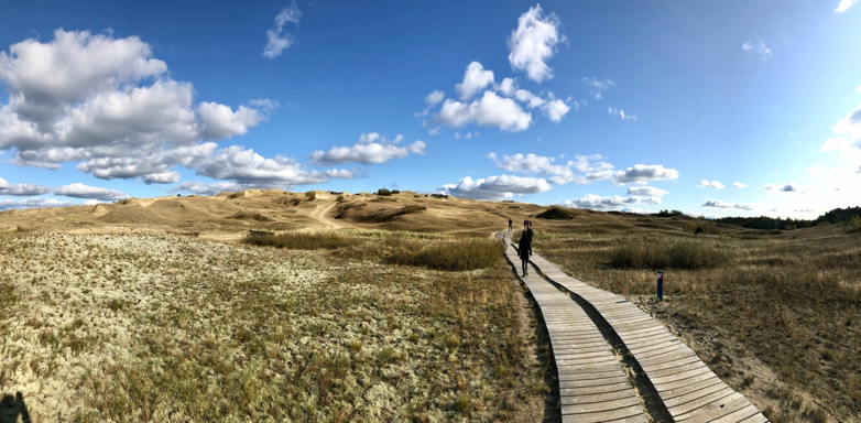 Magnificent natural landscape - The Curonian Spit